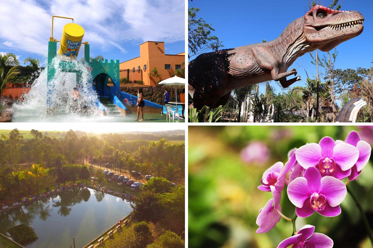 Parque Águas de Olímpia, Vale dos Dinossauros, Pesqueiro do Japonês e Orquidário Aguapey em Olímpia.